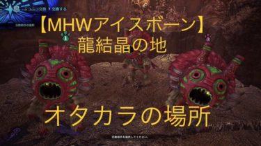 【MHWアイスボーン】龍結晶の地のオタカラ:『奇面族十の願い』の入手場所(画像付き)