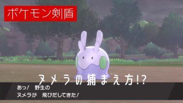 【ポケモン剣盾】ヌメラの分布と捕まえ方